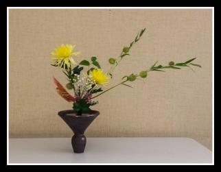 Arrangement by Professor Masakazu Nakamura
